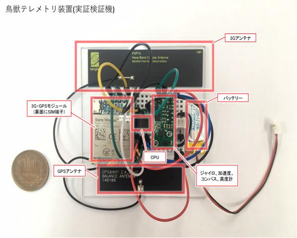 IoT 鳥獣テレメトリ装置